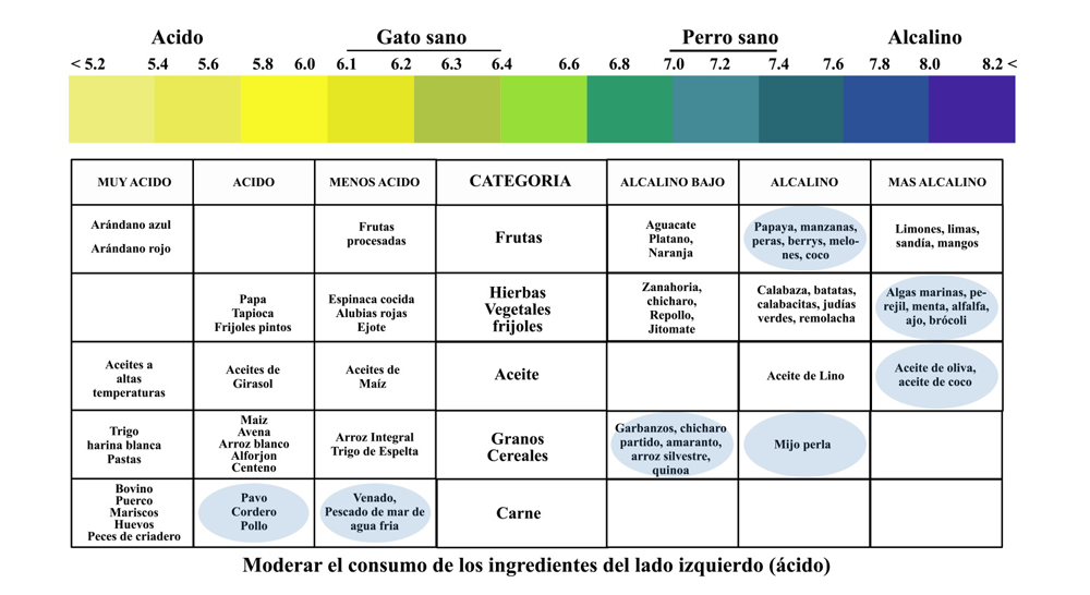 Acidic And Alkaline Foods Chart Spanish - Canine Caviar Pet Foods Inc.